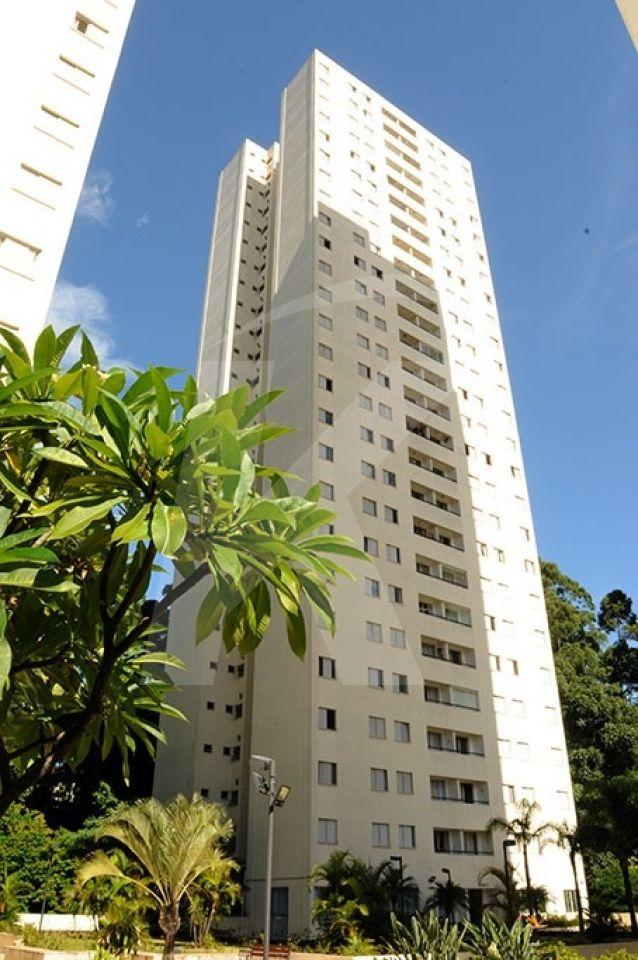 Comprar - Apartamento - Vila Amélia - 3 dormitórios.