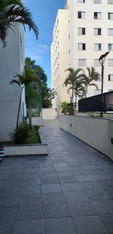 Comprar - Apartamento - Vila Mazzei - 3 dormitórios.
