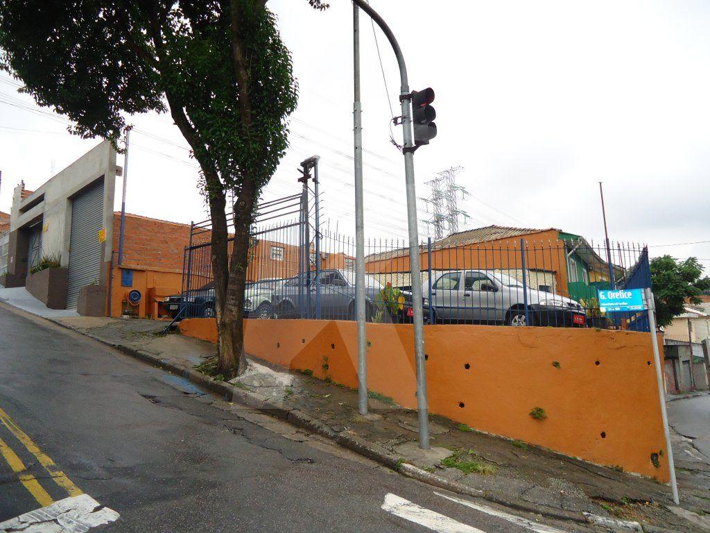Alugar - Terreno - Vila Isolina Mazzei - 0 dormitórios.