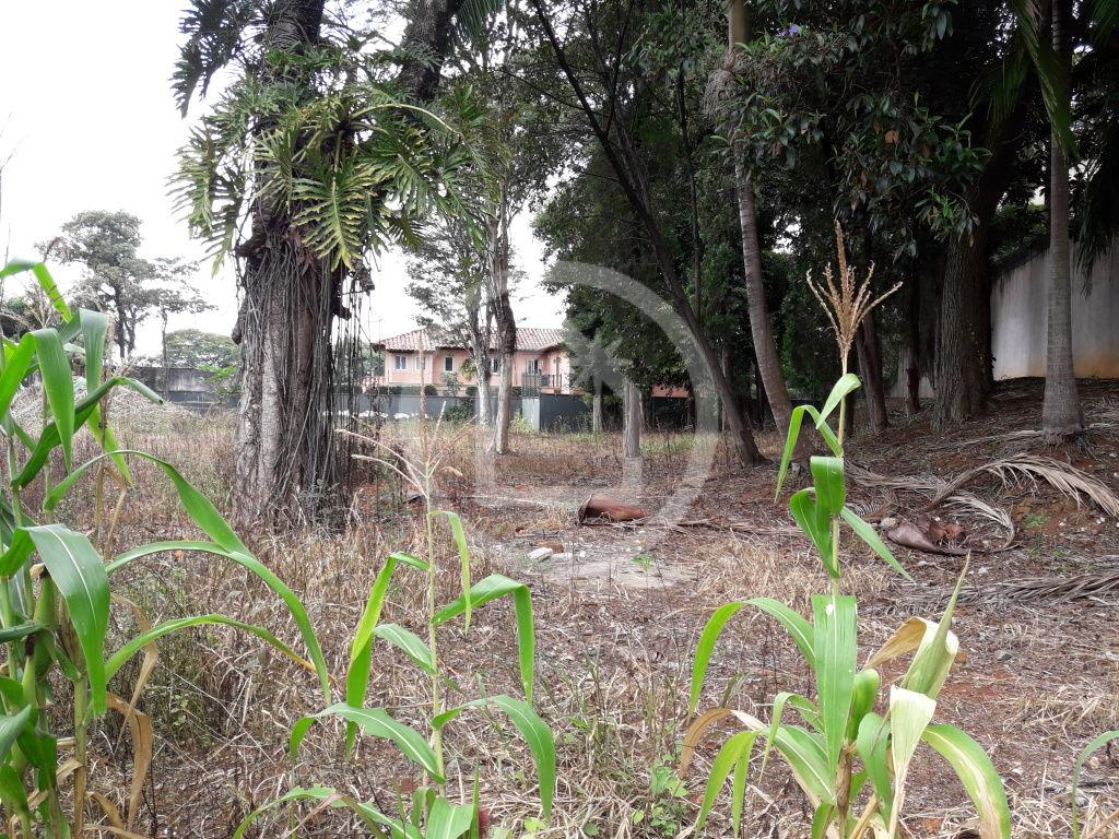 Terreno para Venda - Morumbi