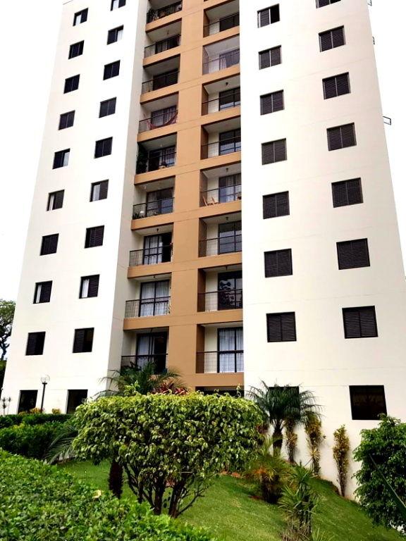Apartamento para Locação - Vila Santos