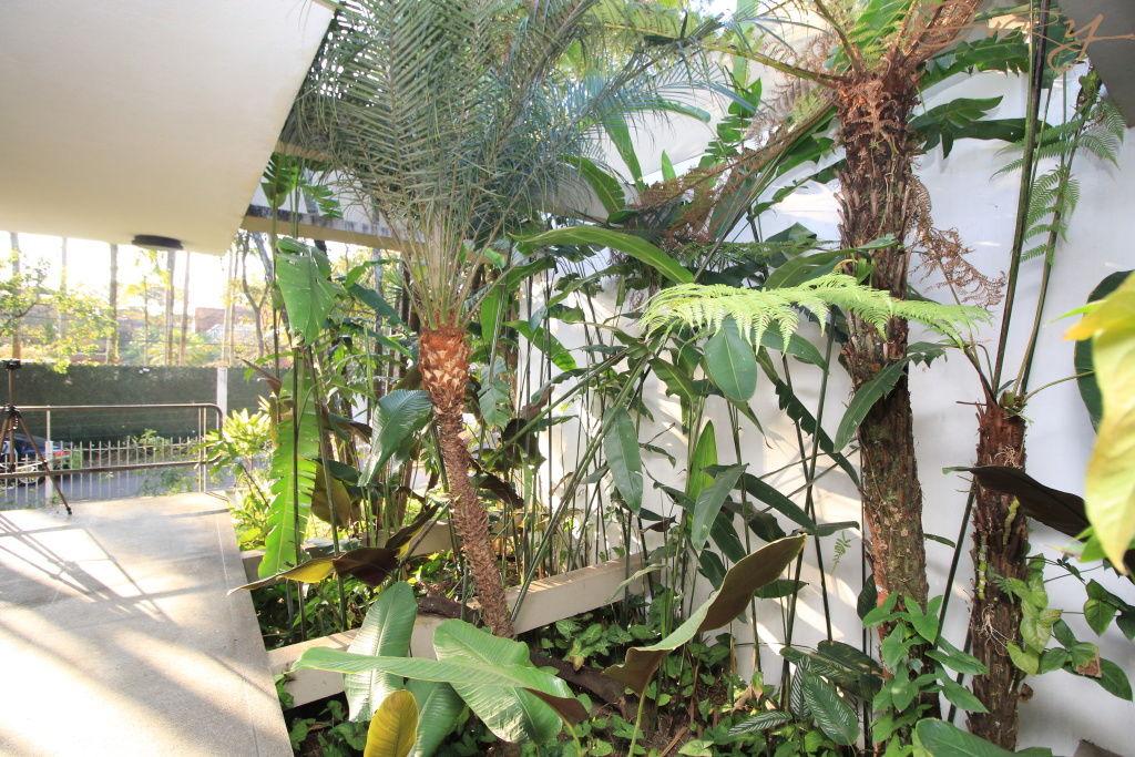 Casa Padrão para Locação - Granja Julieta