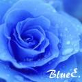 bluee.