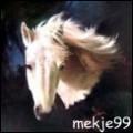 mekje99