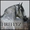fireflyz