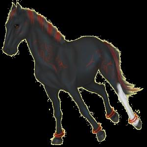 Pegasus Andalusiër Lichtgrijs