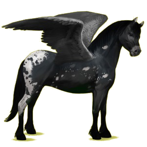 Pony-pegasus Connemara Gestippeld grijs