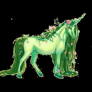 Pony-eenhoorn Connemara Wildkleur