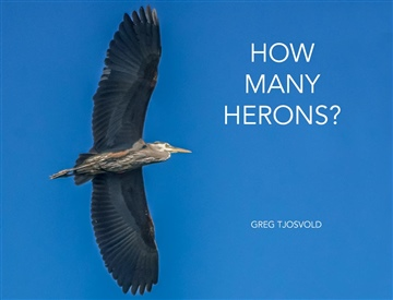 How Many Herons? by Greg Tjosvold