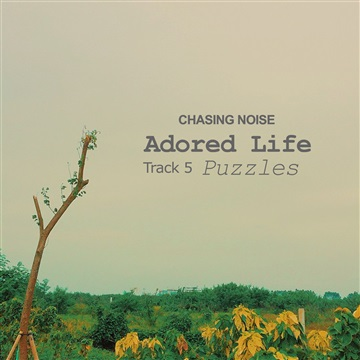 Puzzles by Chasing Noise