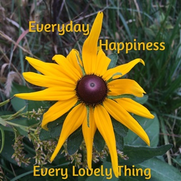 Everyday Happiness (single) by Every Lovely Thing