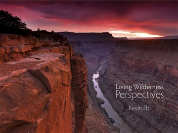 Kevin Ebi : Living Wilderness: Perspectives