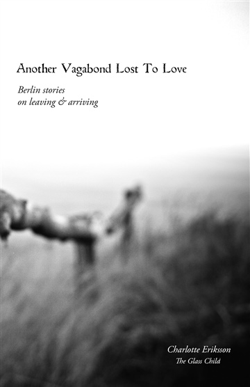 Another Vagabond Lost To Love