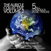 The Auricle Collective : The Auricle Collective - Volume 2