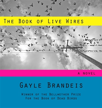 Gayle Brandeis : The Book of Live Wires