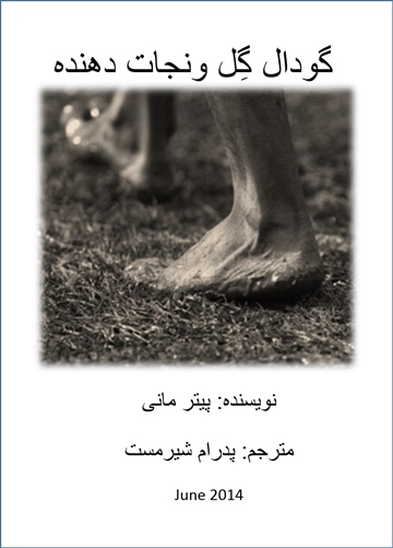 mudpits & saviours (in Persian) by Peter Money