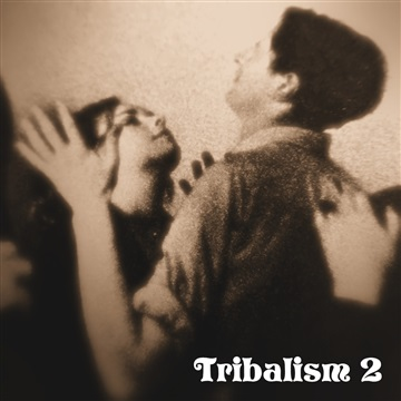 Tribalism 2 by Various Artists