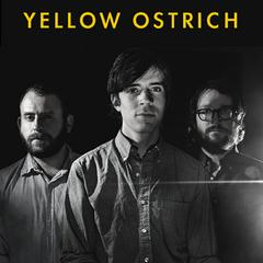 NoiseTrade Sampler by Yellow Ostrich
