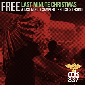 Last Minute Christmas Sampler by MK837