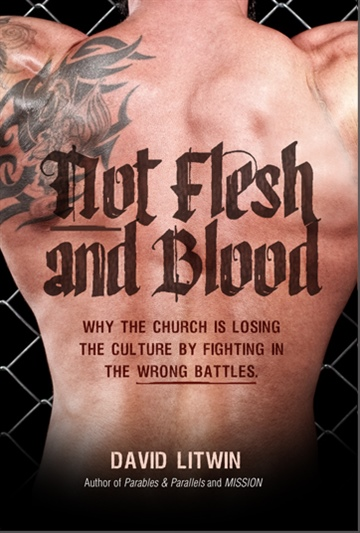 David W Litwin : Not Flesh and Blood: why the church is losing the culture war by fighting in the wrong battles