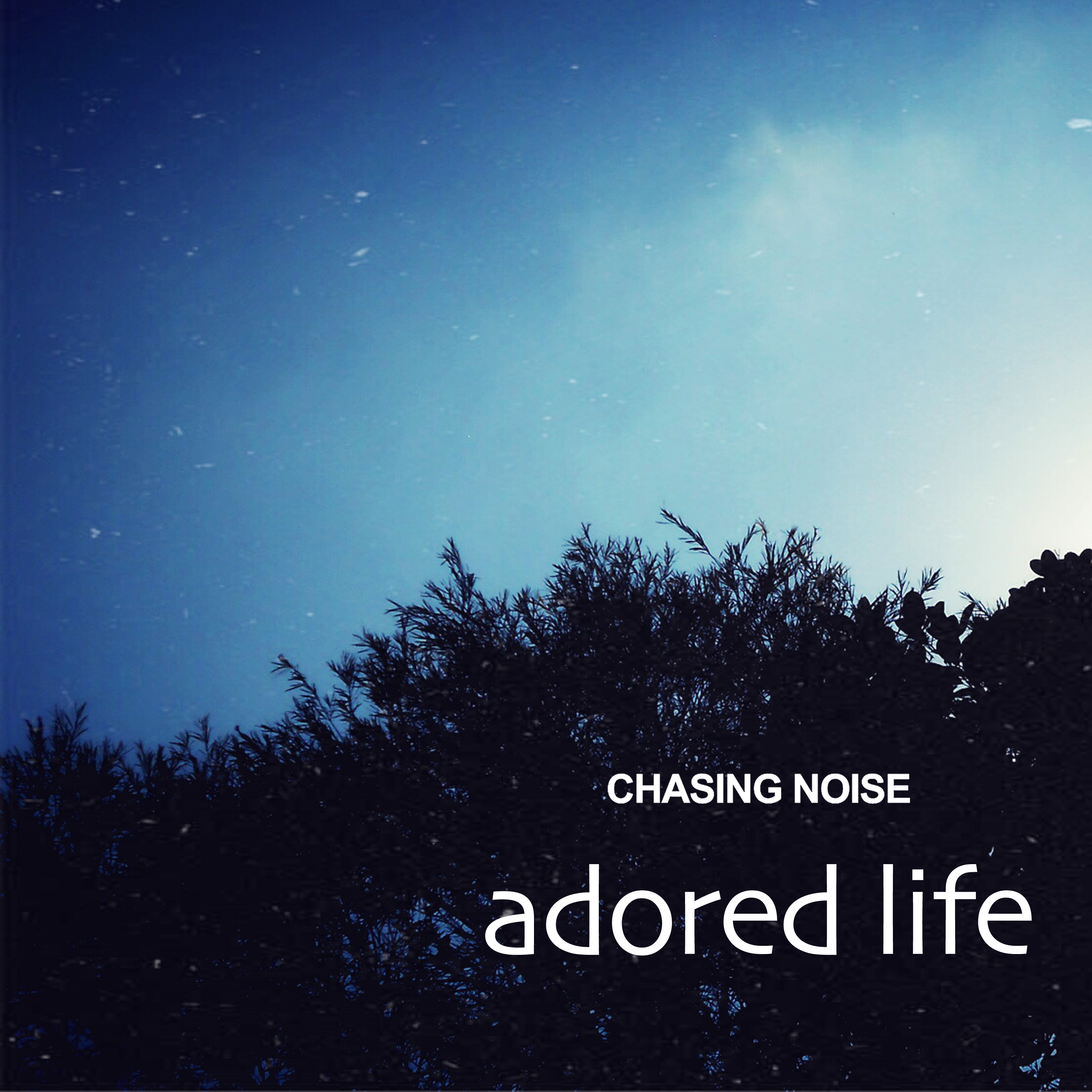 Chasing Noise : Adored Life