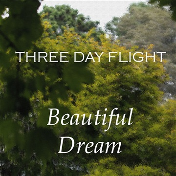 Beautiful Dream by Three Day Flight