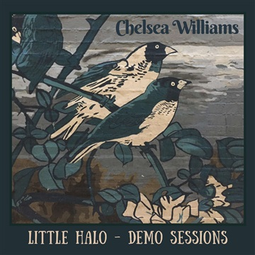 Chelsea Williams : Little Halo Demo Sessions