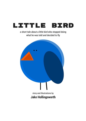 Little Bird by Jake Hollingsworth