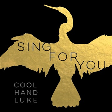 Cool Hand Luke : Sing For You