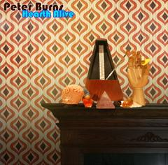 Hearth Alive by Peter Burns