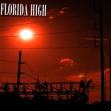 Slightly Faded : Florida High