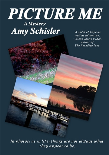 Picture Me by Amy Schisler