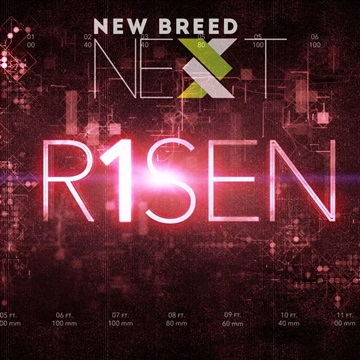 Risen Single by Israel Houghton