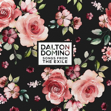 Dalton Domino Songs From Songs From The Exile  by Dalton Domino