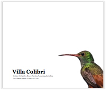 The Birds of Villa Colibri, Bejuco, Costa Rica by Greg Tjosvold
