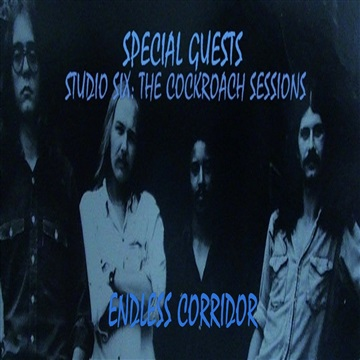 Endless Corridor by Special Guests
