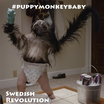 Swedish Revolution : #PuppyMonkeyBaby @mountaindew