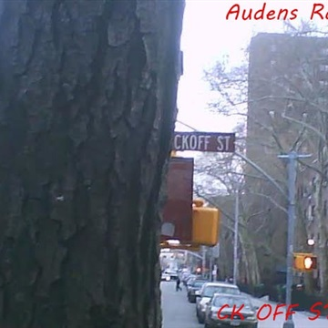 "Audens Raign-""the new self order part three 2010-2013"" ckoff street by Audens raign"