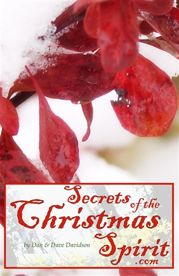 Dave Davidson : Secrets of the Christmas Spirit
