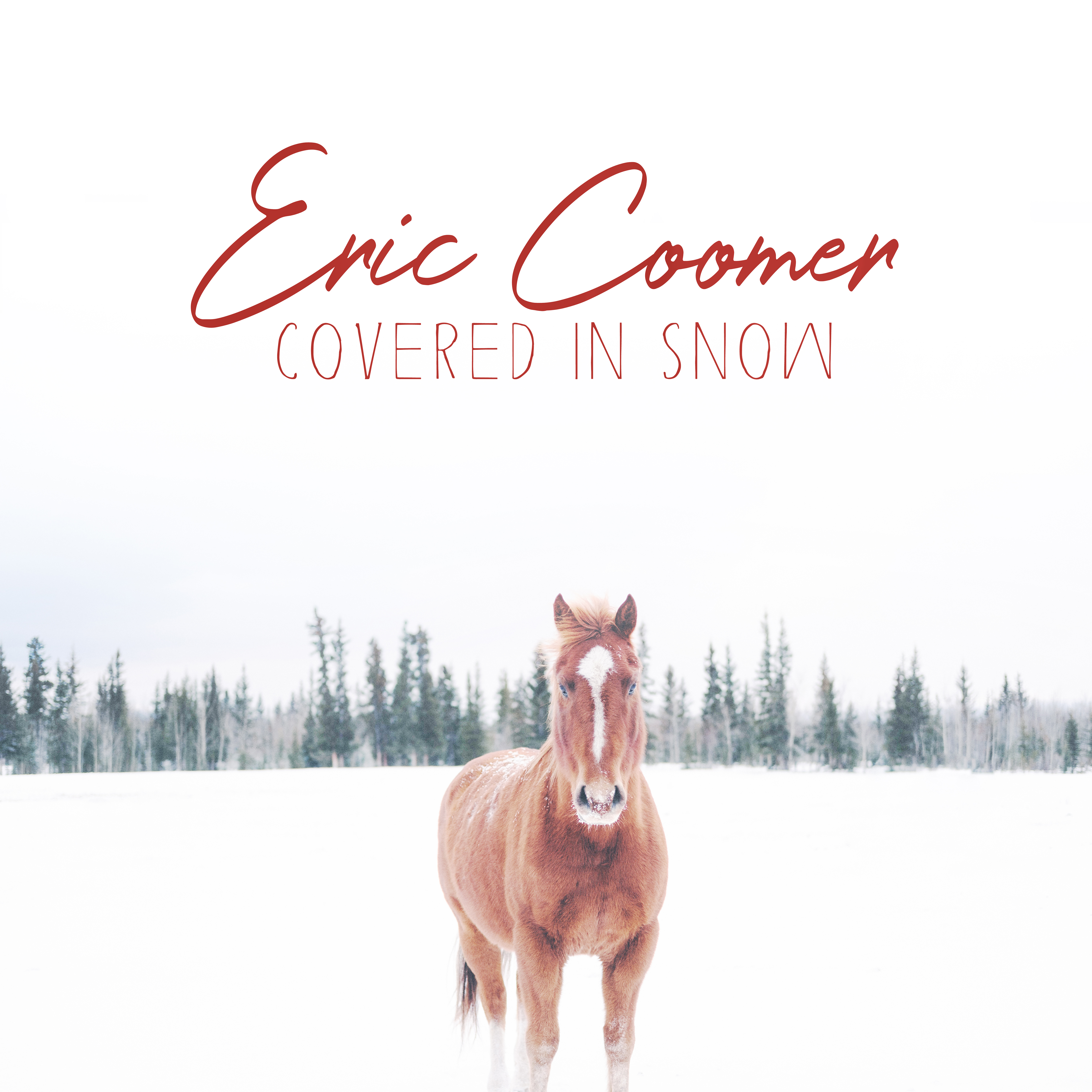 Eric Coomer : Covered in Snow
