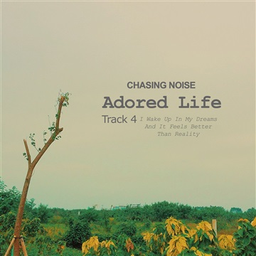Chasing Noise : I Wake Up In My Dreams And It Feels Better Than Reality