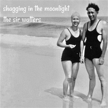 Shagging In The Moonlight by The Sir Walters