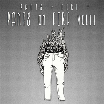 Pants on Fire - A Tribute to The Choir Vol. 2 by Friends And Fans of The Choir