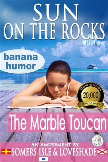Sun on the Rocks - The Marble Toucan