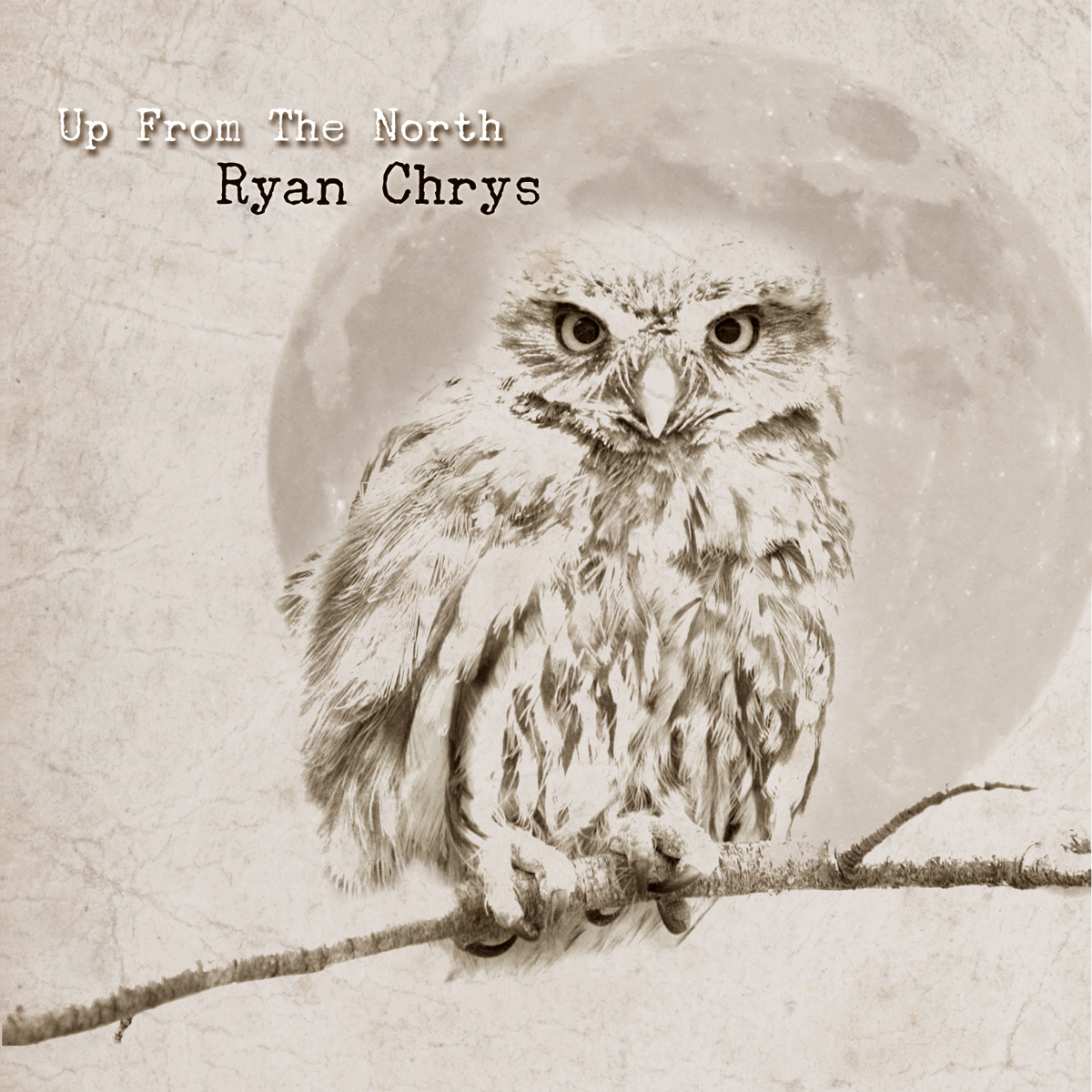 Up From The North by Ryan Chrys & The Rough Cuts