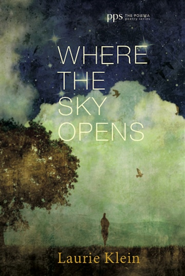 Laurie Klein : Where the Sky Opens (Excerpt: 1/4 of Book)