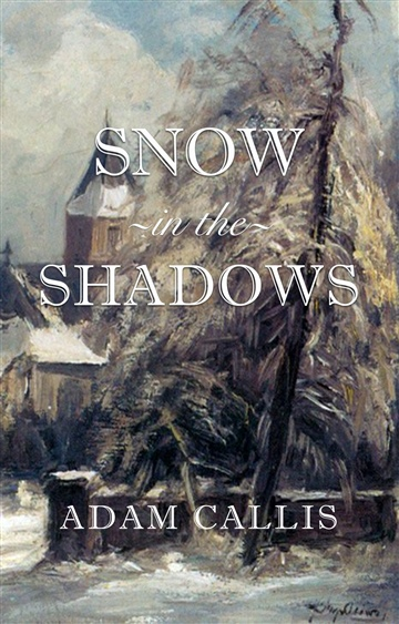 Snow In The Shadows
