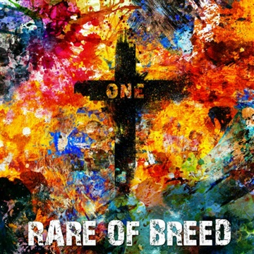 ONE by Rare of Breed