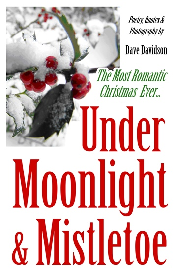 Dave Davidson : Under Moonlight & Mistletoe