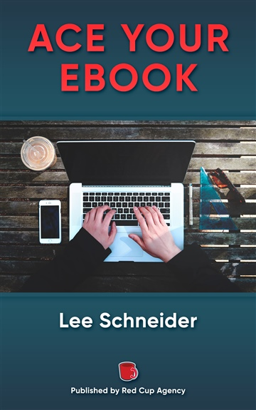 ACE YOUR EBOOK by Lee Schneider